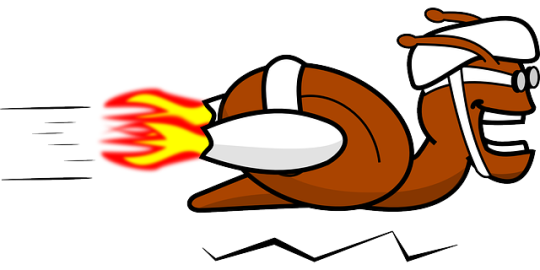 snail-fast