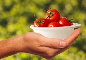 tomatoes-1993695_640