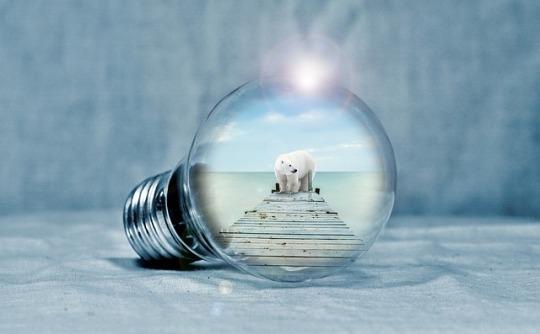 light-bulb-2581192_640